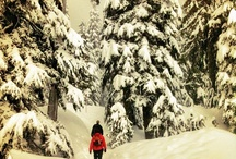 Winter Fun / by Vancouver, Coast & Mountains