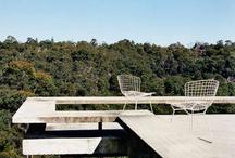 rooftop / by Bernardo Garcia
