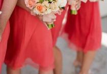 Wedding Flowers / by Errin Schwalbe