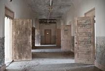 Asylum Mood Board / by Messina Salter
