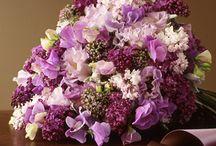 Flowers / by Lauren D.