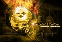 **The Pittsburgh Steelers** / by Janice Wysocki