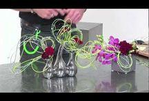 Floral videos / by Jenny Stern