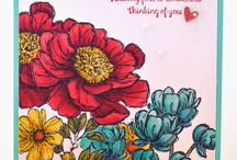 Bloom With Hope Cards SU / by Patricia Lemont
