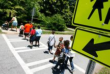 Safe Routes to School / by SNAP