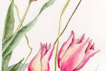 watercolors / by Daniella Barros