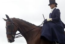 Racehorse to Riding Horse / by Horse Racing Ireland - goracing.ie