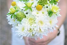 Daisy Inspired Wedding / by Jody Smalley