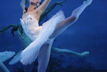 Beauty of Ballet / by Caroline Lovelace