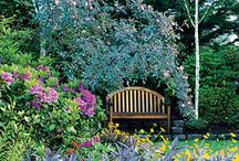 The small outdoors / Ideas for outdoor living and gardens / by Kate Wheeler (Savour Fare)