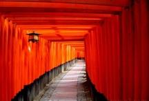 Japan / by Lani Sherman