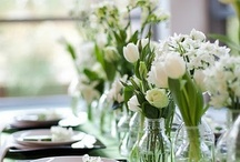 Table setting / by Jessica junco