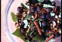 Cultured pearls / A fermentation odysey / by Carol Aus