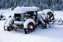 Tractores / by Galiazzi Familia