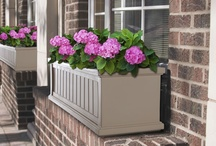Flowers for Your Facade  / Planters and window boxes are a fantastic way to add color and curb appeal to any home.   / by Frontera Furniture