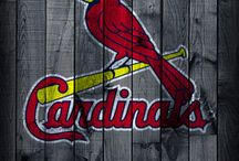 Cardinals baseball / by Donna Vore