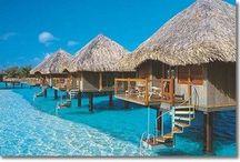 Dream Vacation Spots / by Kim Ballantyne