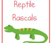 THEME ~ Alligator, Crocodile, Reptiles / by Debra Kelly Myers