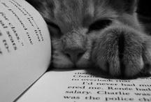 Great Books / by Kim McSwain