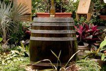 Yard & Garden Projects / by Beki Bennett