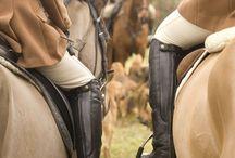 equestrian / by amy bytzek