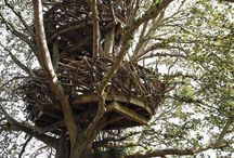 Treehouse Art / Clever thinking and clever hands... / by Jeni Hansen