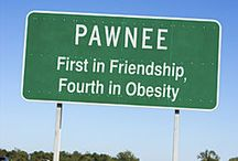 The Parks And Recreation Department Of Pawnee Indiana / by Larson Carter