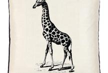 Giraffes / by Sara Hollenbeck