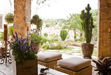 Desert Garden / by Heather Dials