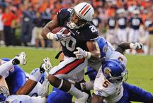 Auburn Football 2014 / by Auburn Alumni Association