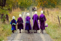 Amish Admiration / I'm so intrigued with the Amish culture... / by Ginny Walker