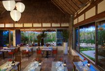 Lucca Restaurant / Type of Cuisine: Italian-Mediterranean Location: Zen Grand Section Age: Family Friendly Attire: no shorts, sleeveless t-shirts, sneakers or sandal. Hours: 6pm - 11pm Reservations: 1-877 418 2963 / by Grand Velas Riviera Maya