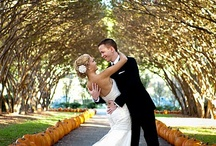 Fall Wedding Inspiration - For Alicia & Chad / by Jessica Fike