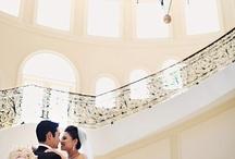 wedding / by Jessie Cammuse