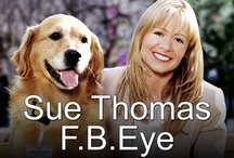 Sue Thomas F.B.Eye / Best TV series ever! / by Pat Christopherson