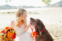 Wedding Planner / by Nilda Kelly