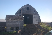 Barn Restoration / by Michelle Marine