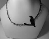Crows / by Jenny Crow