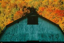 I love barns / by Jen Kaley