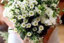 Wedding Boquets / by Alex Herndon