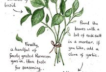 All things Herbs!! / by Christy Almond