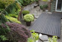 Gardening & Yard Ideas / by Joey Finley