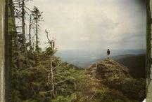 Timber Magazine / by Emma Rae Lierley