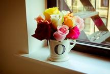 flowers / by Jane