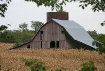BARNS / by Dyana Beek