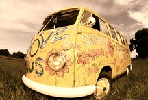 Cool Bugs & Vans / by colleen mcfall