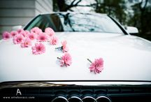 Bridal Car Decoration / by Elegante Wedding