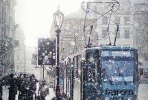 Winter Wonderland / by Echo Symmons