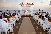 Angie's wedding / by Anthony N Mazza