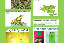 Frog Unit study ideas / Frog unit study ideas for preschool and early elementary / by Lara @ Lara's Place and a Cup of Grace